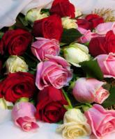 كيف تختارين أزهار زفافك؟