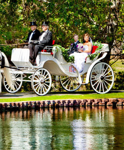 شروط اختيار سيارة الزفاف