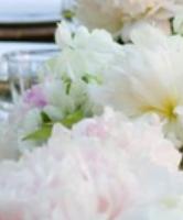 نصائح لاختيار أزهار الزفاف