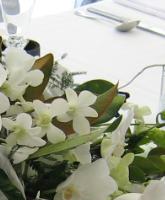 قواعد هامة عند اختيار ازهار الزفاف